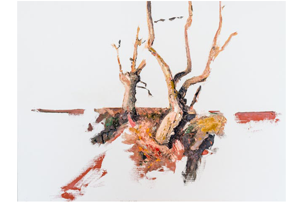 Etude Les chênes, 60x80